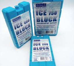 Аккумулятор холода Camping Wordl Iceblock (вес 750 гр) - фото 4